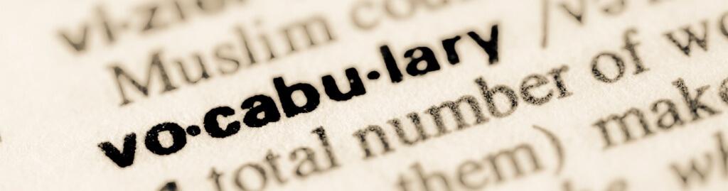 Writing essay custom vocabulary